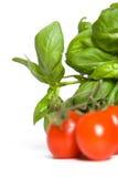 basilika gillar tomaten Arkivbild