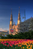 Basilika im Stadtzentrum gelegenes Ottawa Tulip Festival Stockbilder