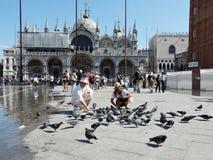 Basilika San-Marco in Venedig Stockfoto