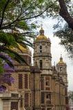 Basilika und Bäume Lizenzfreies Stockfoto