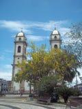 Basilika von Bom Jesus De, Brasilien-iguape stockfotos