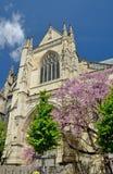 Basilika von St Michael im Bordeaux Lizenzfreie Stockfotos