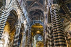 Basilika wölbt Kirchenschiff-Rose Window Stained Glass Cathedral-Kirche Siena Italy stockfotografie