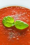 Basilikagarnering på tomatsås Fotografering för Bildbyråer