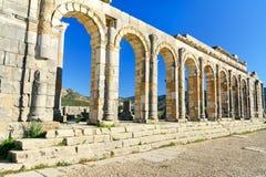 Basilikan i romare fördärvar, den forntida romerska staden av Volubilis morocco Arkivbilder