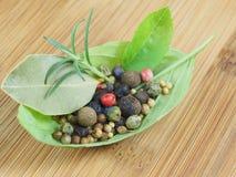 Basilikas blad med kryddor Arkivfoto
