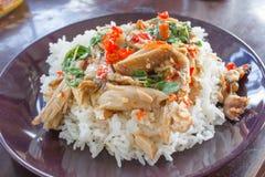 Basilikum gebratenes Schweinefleisch mit Reis lizenzfreies stockbild