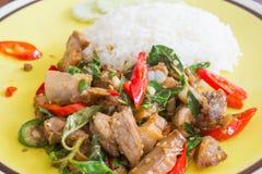 Basilikum gebratenes Schweinefleisch mit Reis stockfotografie