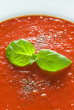 Basilikum schmückt auf Tomatensauce Stockbild
