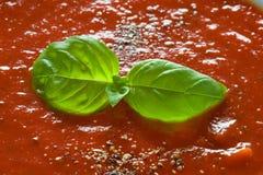 Basilikum schmückt auf Tomatesuppe Lizenzfreies Stockfoto