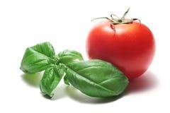 Basilikum und Tomate Lizenzfreie Stockfotos
