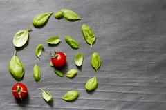 Basilikumblätter auf abstraktem Lebensmittelsteinhintergrund Stockfotos