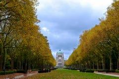 Basilique on autumn Stock Photo