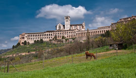 Basilique chez Assisi Images stock