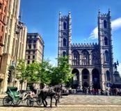 Basilique de Notre Dame Photographie stock