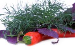 basilu chili koperu pieprz zdjęcia stock