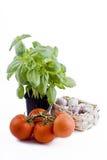 basilu koszykowi świezi czosnku pomidorów warzywa Zdjęcia Royalty Free
