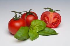 basilu ziele pomidor Zdjęcie Stock