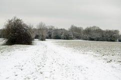Basingstoke błonie z śniegiem Obrazy Royalty Free