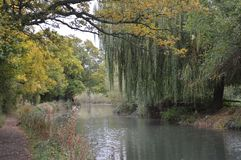 Basingstoke Canal Hampshire near North Warnborough. Autumn  colours with an angler in the distance Stock Photography