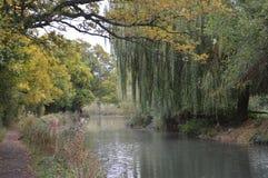 Basingstoke-Kanal Hampshire nahe Nord-Warnborough Stockfotografie