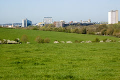 Basingstoke skyline, springtime Royalty Free Stock Photo