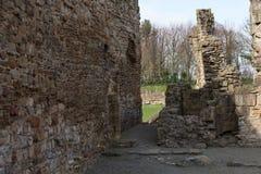 Basingwerk修道院历史的废墟在未开发的地区,在Holywell北部威尔士附近 图库摄影