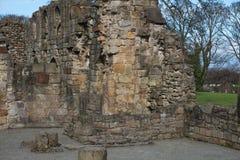 Basingwerk修道院历史的废墟在未开发的地区,在Holywell北部威尔士附近 免版税图库摄影