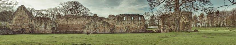 Basingwerk opactwa historyczne ruiny w Greenfield, blisko Holywell północy Walia zdjęcie royalty free