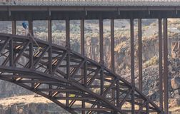 Basis Jumper Leaps van Perrine Bridge Royalty-vrije Stock Foto
