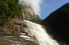 Basis von Angel Falls - Venezuela lizenzfreie stockfotografie