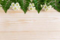 Basis voor een banner met natuurlijke bloemen en bladeren Frame voor groetkaart Achtergrond voor een banner met bloemen en ruimte stock afbeelding
