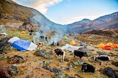 Basiskamp onder MT MaKaLu in Tibet Royalty-vrije Stock Afbeeldingen