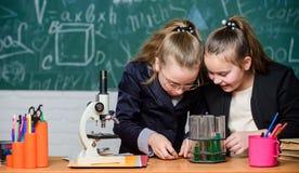 Basiskennis van chemie Het gebruiksreageerbuizen van leerlingen leuke meisjes met vloeistoffen Het Concept van het chemieexperime stock fotografie