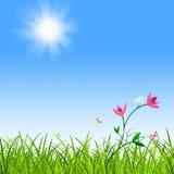 Basisrecheneinheit und Blüte in der Wiese Stockbilder