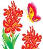 Basisrecheneinheit und rote Blume Lizenzfreie Stockfotos