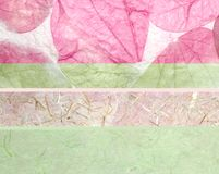 Basisrecheneinheitsblätter und Reispapier Stockfotografie