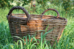 Basket. Empty Brown Wicker Basket in Green Grass Royalty Free Stock Photos