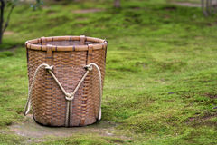 Basket. On the lawn Stock Photos