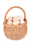Basket And Eggs Stock Photos