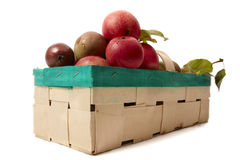 Basket with apple Stock Image