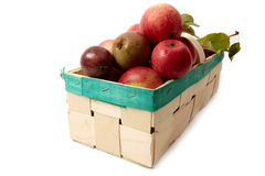 Basket with apple Royalty Free Stock Photos