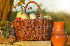 Basket of apple with ceramic pitcher Royalty Free Stock Photography