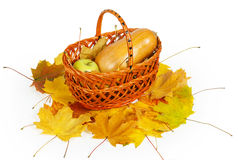 Basket with apple and pumpkin on autumn maple leaves Stock Images