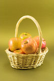 Basket of apples. On green/gold background stock image