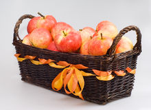 The basket with apples. On the white background Stock Photography