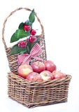Basket of apples. On white Royalty Free Stock Image