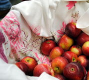 Basket of Apples Stock Photography