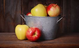 Basket of apples Royalty Free Stock Image