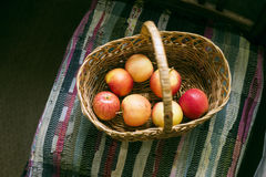 Basket of apples on chair, autumn rustic still life Royalty Free Stock Photo